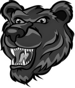 Grizzly Home Services